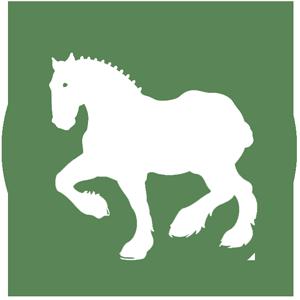 Horse Icon GREEN